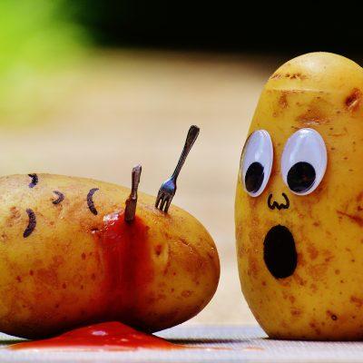 Com sabem si un aliment està en bon estat?